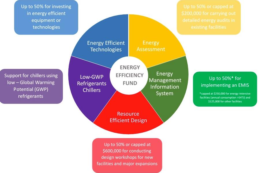 energy efficiency assessment
